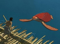 The Red Turtle artist photo