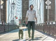 John Wick: Chapter 2 artist photo