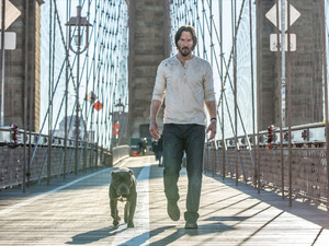 Film promo picture: John Wick: Chapter 2