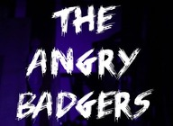 The Angry Badgers artist photo