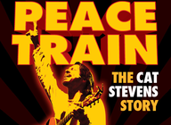 Peace Train - The Cat Stevens Story artist photo