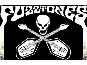 The Fuzztones artist photo