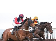 Eyton Point-to-Point Races artist photo