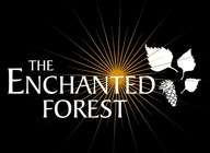 The Enchanted Forest artist photo