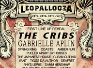Leopallooza  artist photo