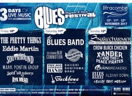 Ilfracombe Blues, Rhythm and Rock Festival 4 artist photo