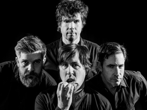 Mountain Goats artist photo
