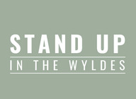 Stand Up In The Wyldes artist photo