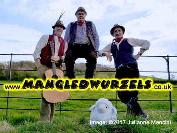 7th Bath Cider Festival: The Mangledwurzels picture