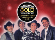 Gold Weekender December Party artist photo