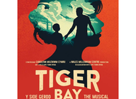 Tiger Bay: Cape Town Opera, Wales Millennium Centre, John Owen-Jones, Noel Sullivan, Suzanne Packer, Zolani Shangase artist photo