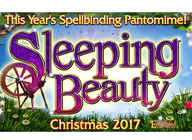 Sleeping Beauty: Lee Brennan, Cheryl Fergison artist photo