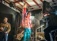 The Moonlandingz artist photo