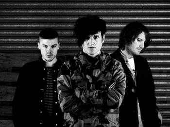 The Virginmarys picture