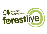 The Forestry Commission presents Forest Live 2018 artist photo