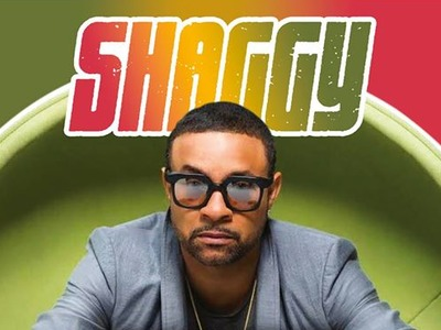 Shaggy artist photo
