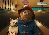 Paddington 2 artist photo
