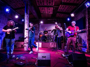 The Elephant Sessions artist photo