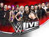 World Wrestling Entertainment (WWE) announced 4 new tour dates