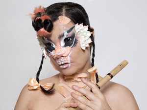 Björk artist photo