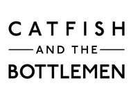 Catfish and the Bottlemen artist insignia