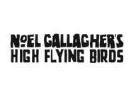 Noel Gallagher's High Flying Birds artist insignia