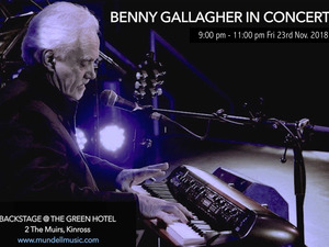 Benny Gallagher artist photo